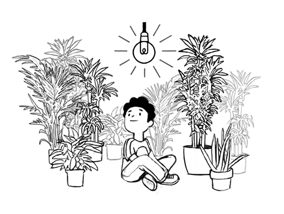 cartoon boy relaxed and happy with plants after anxiety mentoring